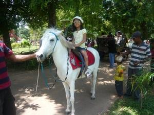 Pony_l
