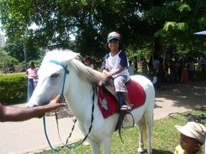 Pony_r